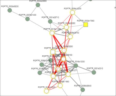pathway nodes